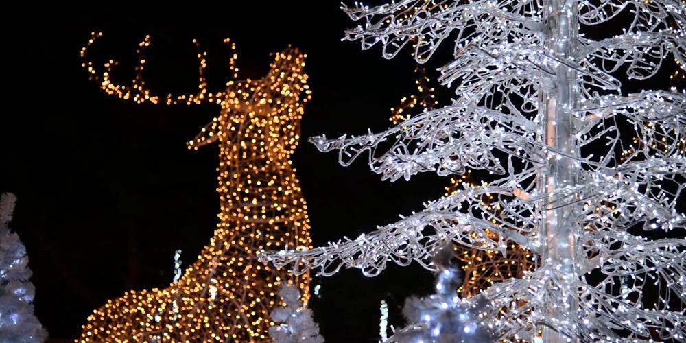 Luci Di Natale A Napoli.Luci Di Natale Tra Napoli E Dintorni Sinfonia Di Luminarie